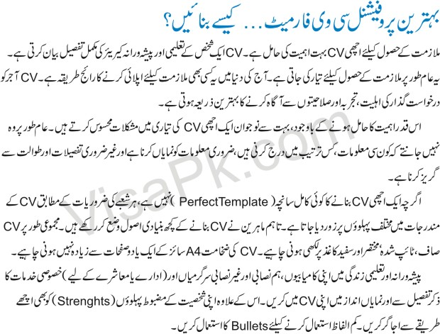 Latest Best professional CV format in Urdu 1