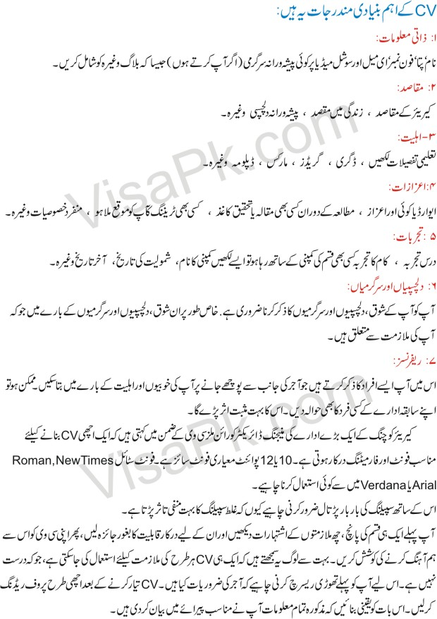 Latest Best professional CV format in Urdu 2